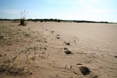 Sand desert. Small sand-drift on the desert royalty free stock image