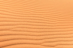 Sand desert background with wind ripple Royalty Free Stock Image