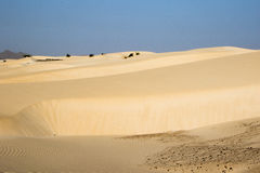 Sand desert in Cape Verdi Stock Image