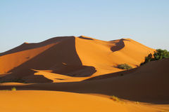 Sand desert dunes panorama at sunset royalty free stock image
