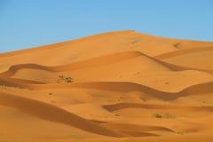 Sand desert dunes Sahara Stock Photography