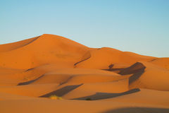 Sand desert dunes Sahara stock photo
