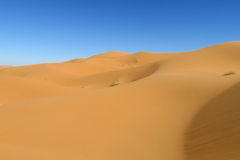 Sand desert dunes Sahara Stock Image