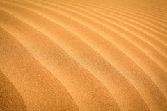 Sand desert Stock Photography