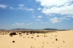Sand desert landscape Royalty Free Stock Image