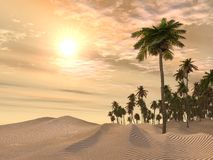 Sand Desert With Palm Trees Stock Image