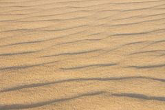 Sand in the desert of the sahara Stock Photo