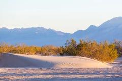 Sand desert. Scenic sand dunes in desert stock image