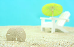 Sand Dollar. And Beach Chair, Shallow DOF Stock Photos