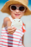 Sand dollar Stock Images