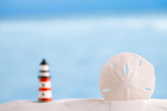Sand dollar shell on sea and lighthouse background Royalty Free Stock Image