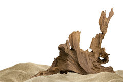 Sand and driftwood. For aquarium background royalty free stock photos