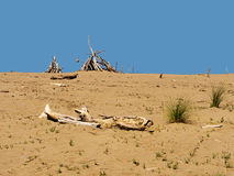 Sand and driftwood sand or desert background Stock Images