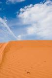 Sand dune. In Nevada desert Royalty Free Stock Images