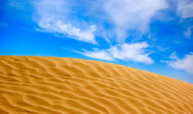 The sand dune. In desert landscape royalty free stock photos