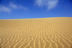 Sand dune. With blue sky in the namibian desert Stock Image