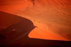 Sand Dune. Red Sand Dune in Sossusvlei, Namibia Stock Photos