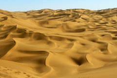 The sand dune Stock Photography
