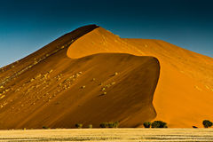 Sand Dune. Huge sand dune in sossusvlei in the Namib Desert, Namibia Royalty Free Stock Photos
