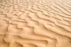 Sand dune Royalty Free Stock Photo