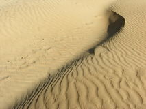 Sand-dune. A yellow sand-dune background with a sand-wave Stock Image