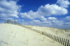 Sand Dune, Assateague National Wildlife Refuge, Virginia Stock Photos
