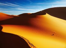 Sand Dune At Sunrise, Sahara Desert Stock Image