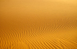 Sand dune background Royalty Free Stock Photo