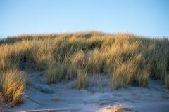 Sand dune. Background. royalty free stock photo