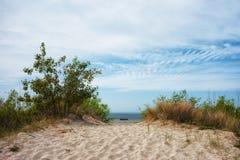 Sand Dune at Baltic Sea in Jastarnia Stock Image