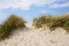 Sand dune at baltic seaside. Marram grass lined trail leading up sand dune at baltic seaside Stock Photo