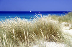 Sand dune on the beach. Sea and boat at Maiorca, Baleares, Spain Royalty Free Stock Photography
