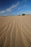 Sand Dune on the beach Royalty Free Stock Photo