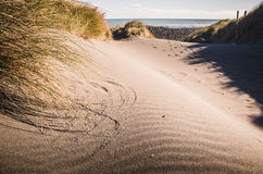 Sand dune at the beach Stock Photos