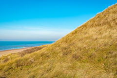Sand dune on the beach with yellowed marram grass Stock Photos
