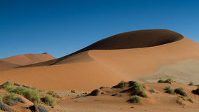 Sand Dune Big Mama at Sossusvlei Royalty Free Stock Image