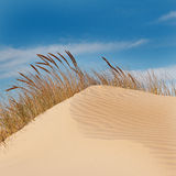 Sand Dune and Blue Sky Royalty Free Stock Photography