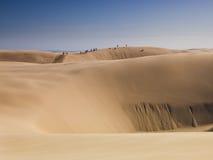 Sand Dune boarding Stock Image