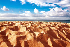 Sand dune of Bolonia beach, province Cadiz, Andalucia, Spine Stock Images