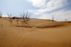 Sand dune with cloud and sky Stock Photo