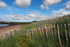 Sand dune conservation fence and wild grass planting in ireland Stock Images