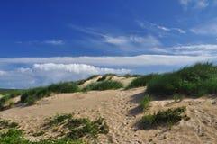 Sand dune, Cornwall, England, UK. Stock Image
