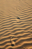 Sand dune of cumbuco Royalty Free Stock Photos