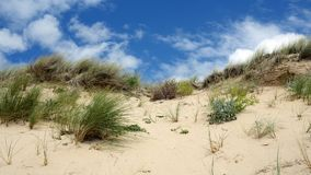 The sand dune Royalty Free Stock Photography