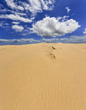 Sand Dune Day Vertical Panorama Stock Images