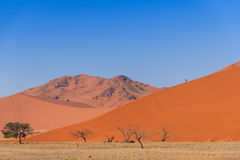 Sand dune with dead trees deadvlei Namibia Stock Photography