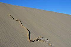 Sand dune in Death Valley Stock Photography