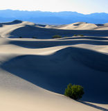 Sand Dune in Death Valley NP, CA Stock Photo