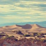 Sand dune in the desert Stock Image