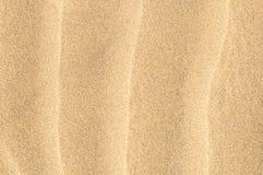 Sand Dune Desert Texture Stock Images